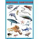 Плакат Морские обитатели 0880-6