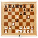 Шахматы демонстрационные магнитные 01756