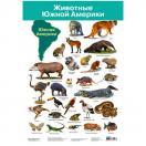 Плакат. Животные Южной Америки  2882