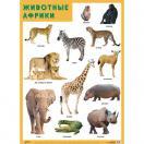Плакат Животные Африки