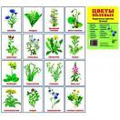 Цветы полевые. 16 раздаточных карточек с текстом