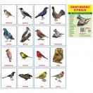 Зимующие птицы.16 раздаточных карточек с текстом